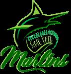 Scott Park Marlins Logo